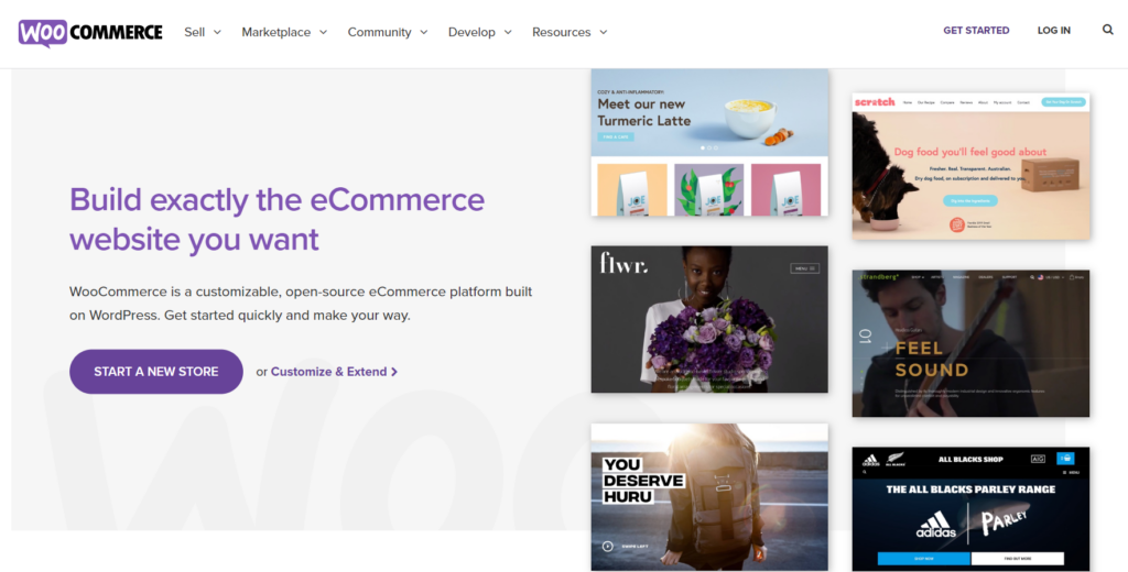 create an online store with wordpress woocommerce